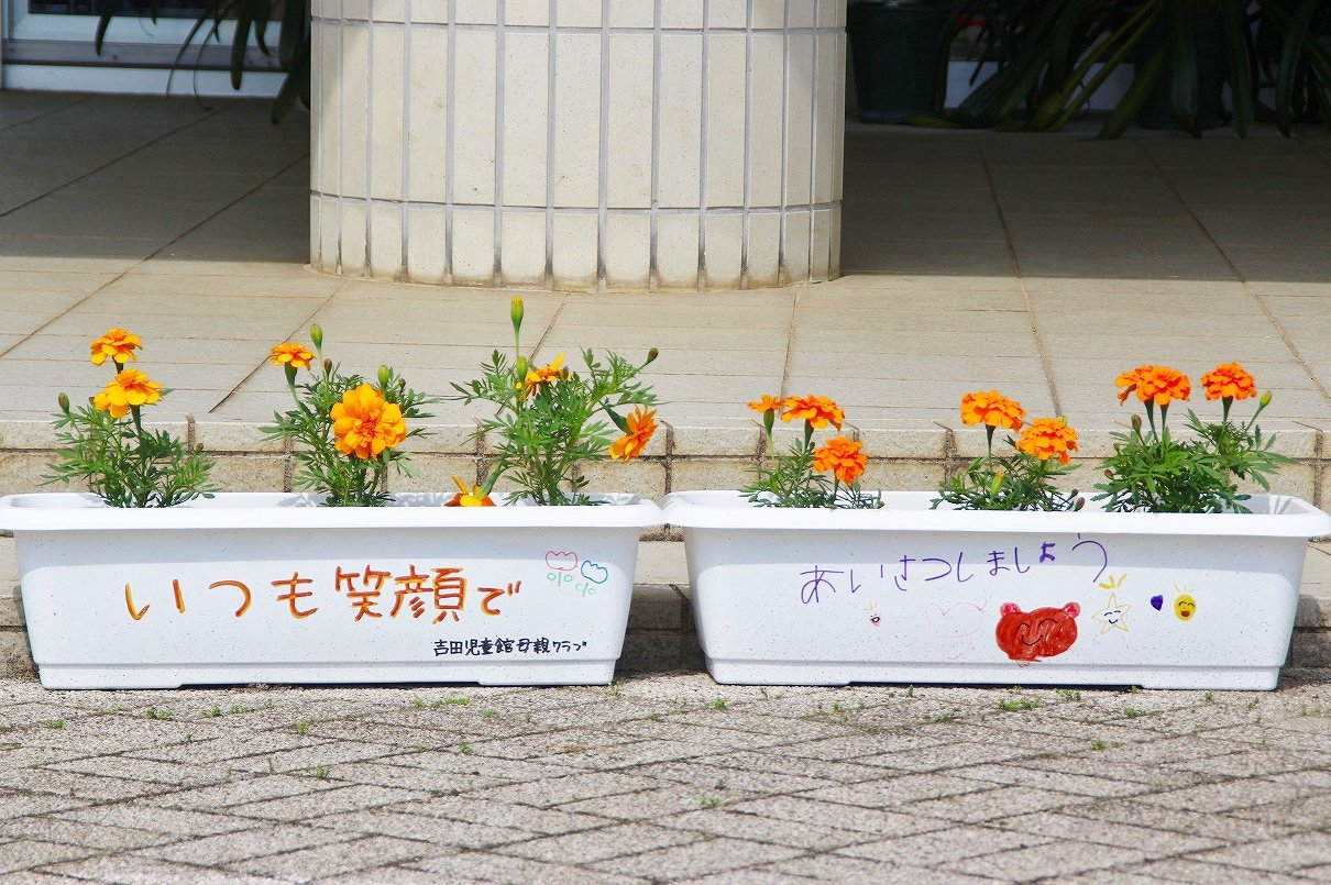 https://www.taiwa-tk.ed.jp/yoshida-e/0d15bd657d1b4a8a87280e8920e2c097b4802a38.jpg