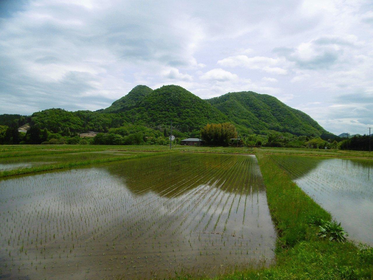 https://www.taiwa-tk.ed.jp/yoshida-e/a46d0a112efc1c785669ce1fc6449615934b5ab8.jpg