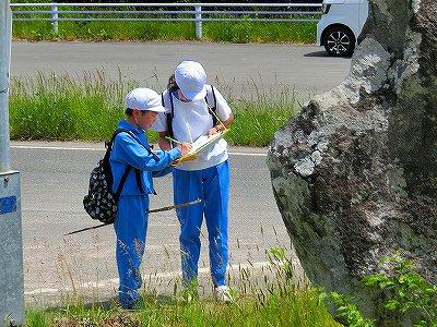 https://www.taiwa-tk.ed.jp/yoshida-e/f56799501c9e4201651dfc3236aec4c4c1a054a3.jpg